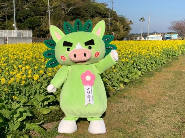 菜の花マラソン用_210113_1