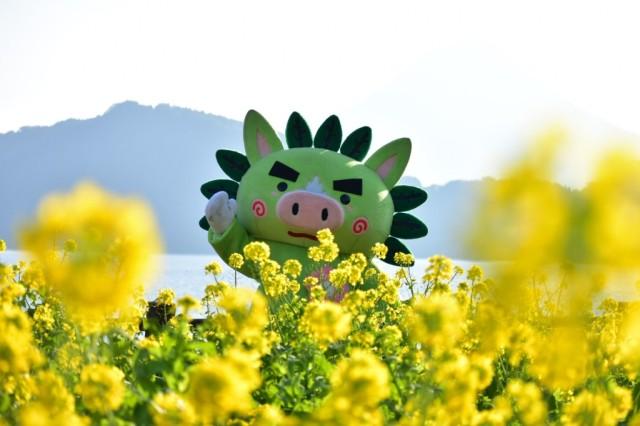 菜の花マラソン用_210113_5